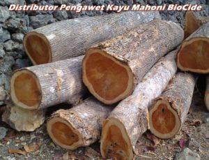 Distributor Pengawet Kayu Mahoni BioCide